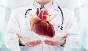 Şehir Hastanesi Kalp Damar Cerrahisi