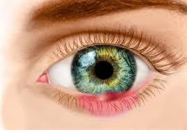 Retina Birimi