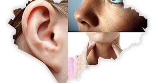 Kulak Burun Boğaz Hastalıkları Hangi Hastalıkları Tedavi Eder