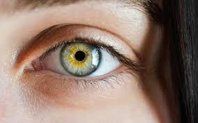 Göz Hastalıkları Nedenleri Nelerdir?